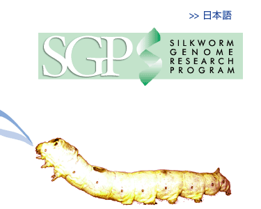 SILKWORM GENOME PROGRAM